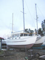 Catfisher for sale - ideal cold weather catamaran. A very strudy boat.